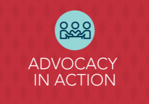 Advocacy in Action -Blog